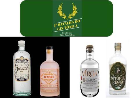 2017-07-06-Gin - Batalha do Gin Tonica